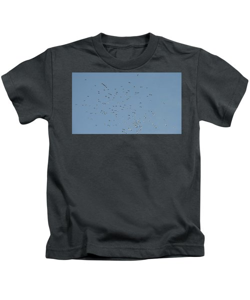 Flock Of Beautiful Migratory Lapwing Birds In Clear Winter Sky Kids T-Shirt