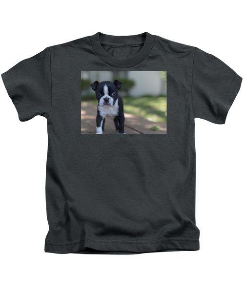 Harley As A Puppy Kids T-Shirt