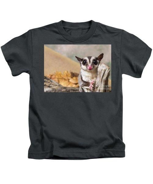 Sugar Glider  Kids T-Shirt