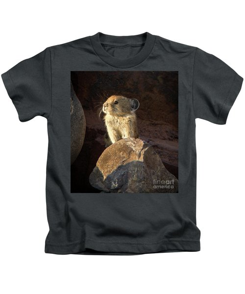 The Coast Is Clear Wildlife Photography By Kaylyn Franks Kids T-Shirt