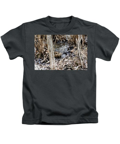 The Elusive American Woodcock Kids T-Shirt