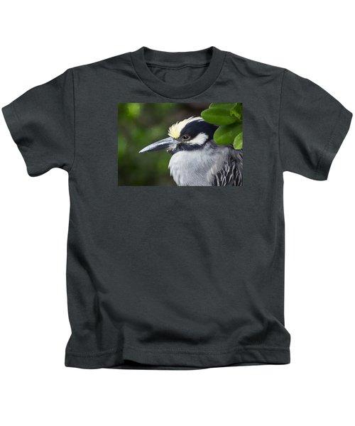 Yellow-crowned Night Heron Kids T-Shirt