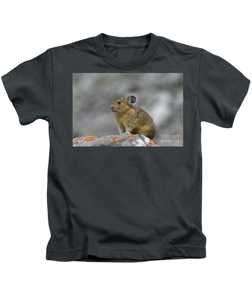 151221p238 Kids T-Shirt