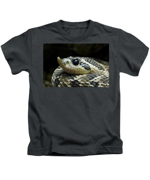 160115p141 Kids T-Shirt