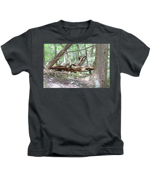 Fallen Tree Kids T-Shirt