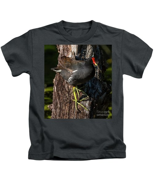 Moorhen Kids T-Shirt