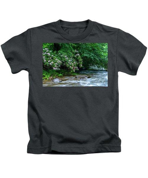 Summer Along Birch River Kids T-Shirt