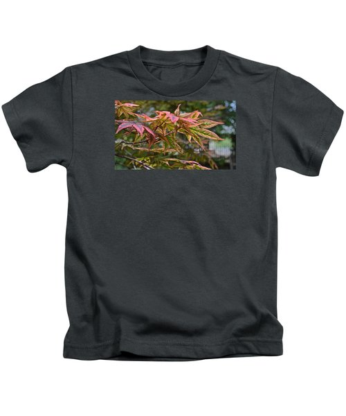 2015 Mid-september At The Garden Japanese Maple 1 Kids T-Shirt
