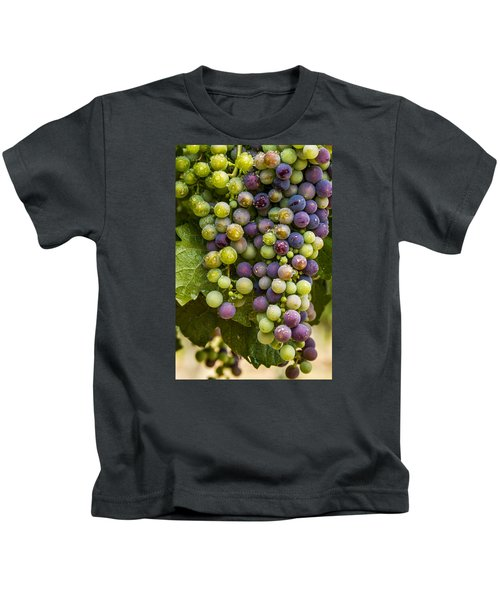 Red Wine Grapes Hanging On The Vine Kids T-Shirt