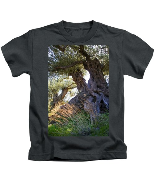 Old Olive Tree Kids T-Shirt
