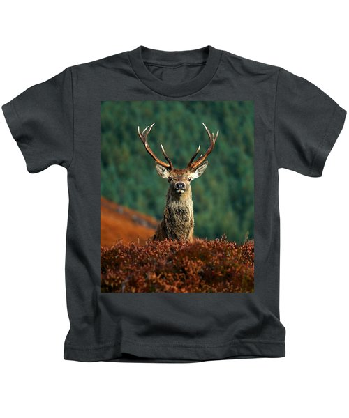 Red Deer Stag Kids T-Shirt