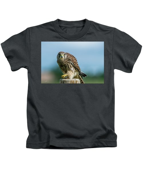 A Beautiful Young Kestrel Looking Behind You Kids T-Shirt