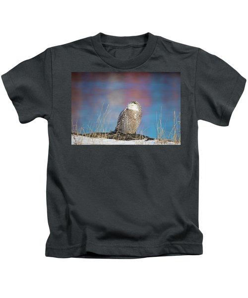 A Colorful Snowy Owl Kids T-Shirt