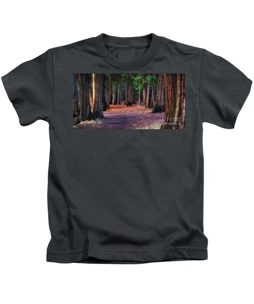 A Path Of Redwoods Kids T-Shirt