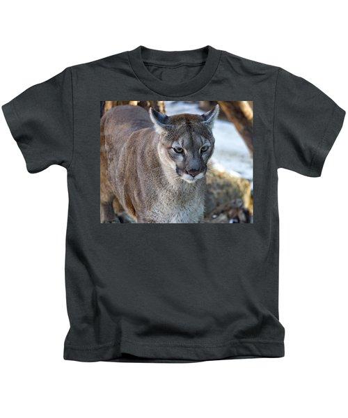 A Stunning Mountain Lion Kids T-Shirt