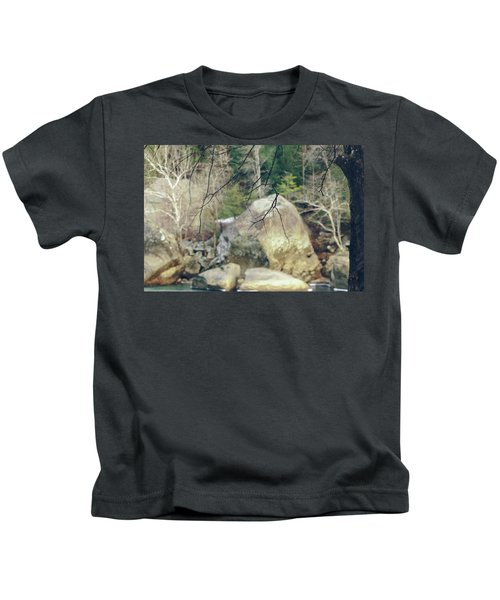 Across From Eagle Falls Kids T-Shirt