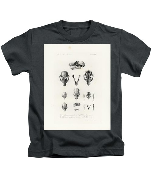 African Mammal Skulls Kids T-Shirt