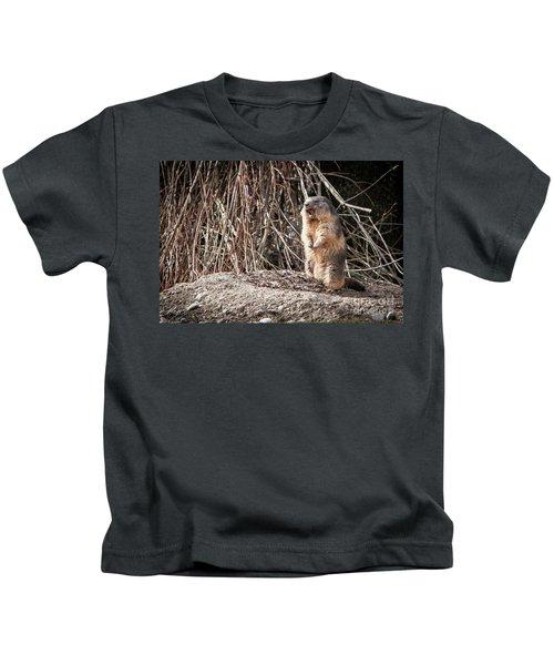 Alan,alan, Alan, Alan Kids T-Shirt