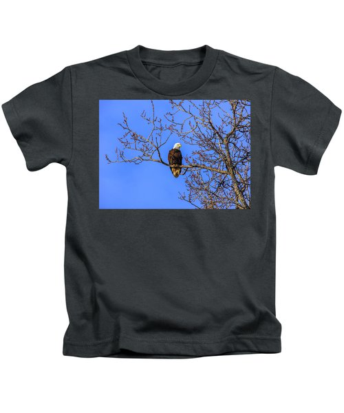 Alaskan Bald Eagle In Tree At Sunset Kids T-Shirt