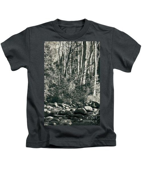 All Was Tranquil Kids T-Shirt