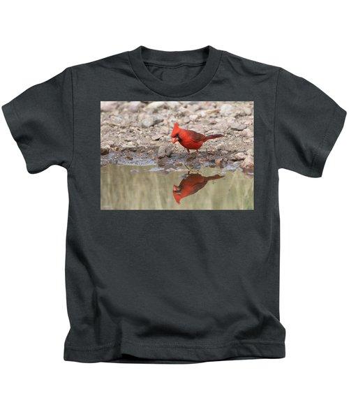 Aren't I A Handsome Devil Kids T-Shirt