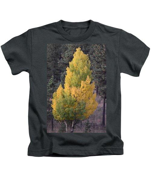 Aspen Tree Fall Colors Co Kids T-Shirt