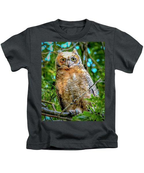 Baby Great Horned Owl Kids T-Shirt