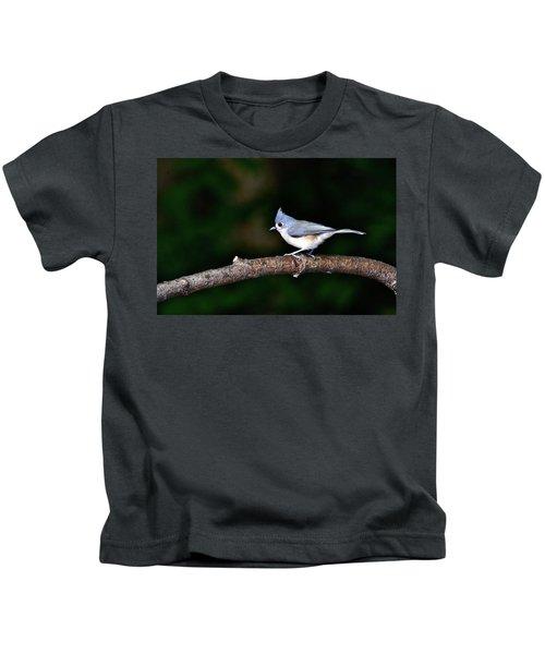 Back Yard Bird Kids T-Shirt