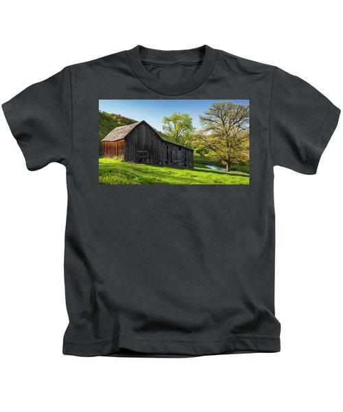 Bad Axe Barn Kids T-Shirt
