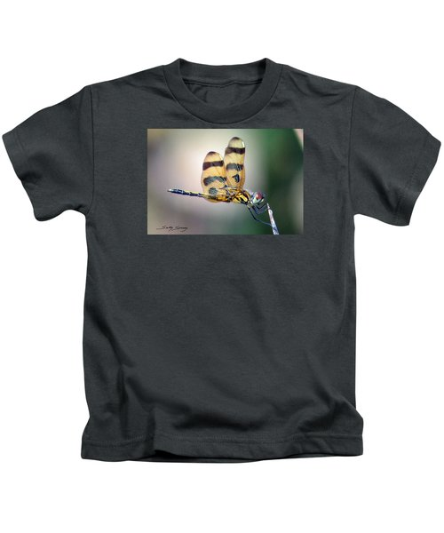 Banded Pennant Kids T-Shirt