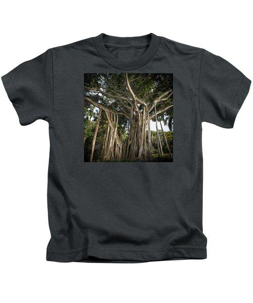 Banyan Tree At Bonnet House Kids T-Shirt