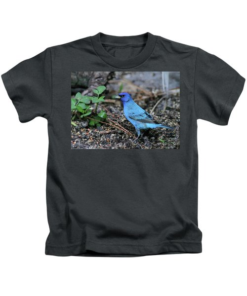 Beautiful Indigo Bunting Kids T-Shirt