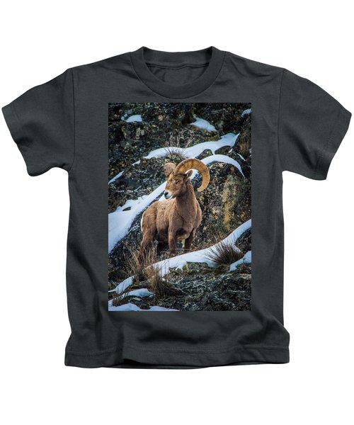 Bighorn Ram 2 Kids T-Shirt