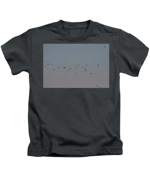 Birds And Airplane Kids T-Shirt