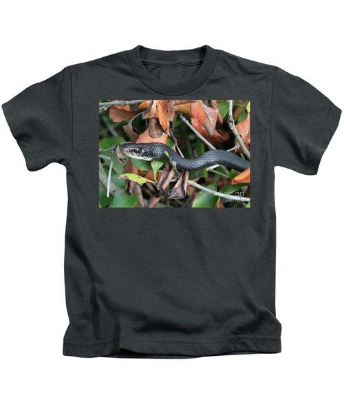 Black Racer Snake Stare Down Kids T-Shirt