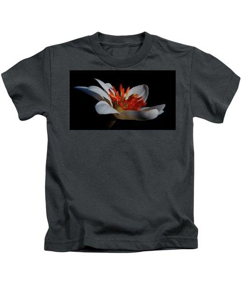 Bloodroot Art Kids T-Shirt