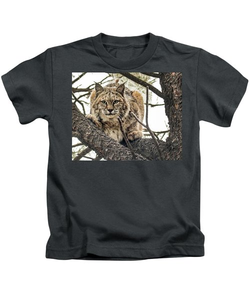 Bobcat In Winter Kids T-Shirt