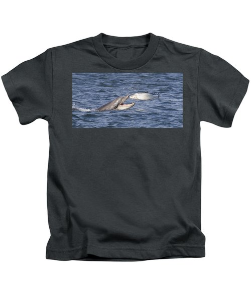 Bottlenose Dolphin Eating Salmon - Scotland  #36 Kids T-Shirt