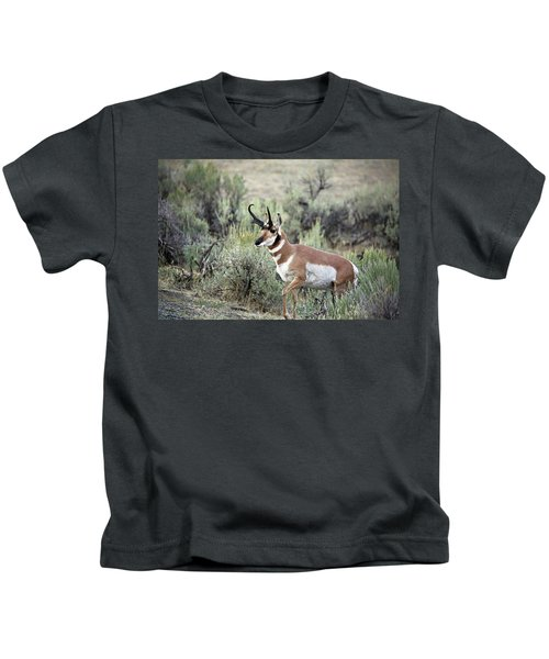 Pronghorn Buck Kids T-Shirt