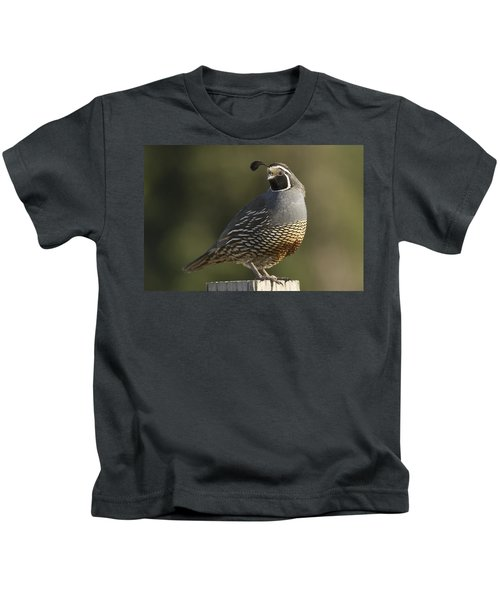 California Quail Male Santa Cruz Kids T-Shirt