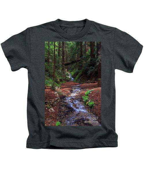 Castro Canyon In Big Sur Kids T-Shirt