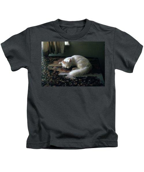Cat On A Puzzle Kids T-Shirt