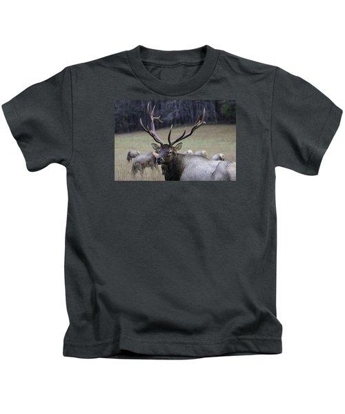 Cataloochee Elk Kids T-Shirt