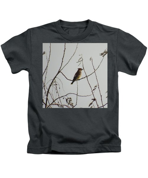 Cedar Wax Wing In Tree Kids T-Shirt by Kenneth Willis