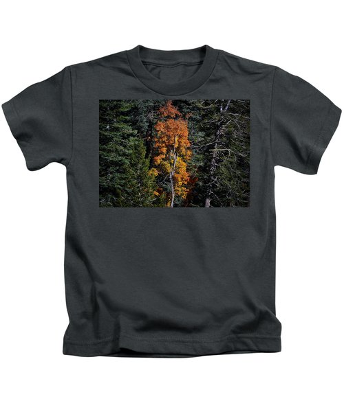Change Of Seasons Kids T-Shirt