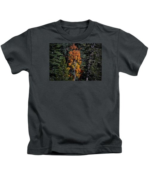 Change Of Seasons Kids T-Shirt