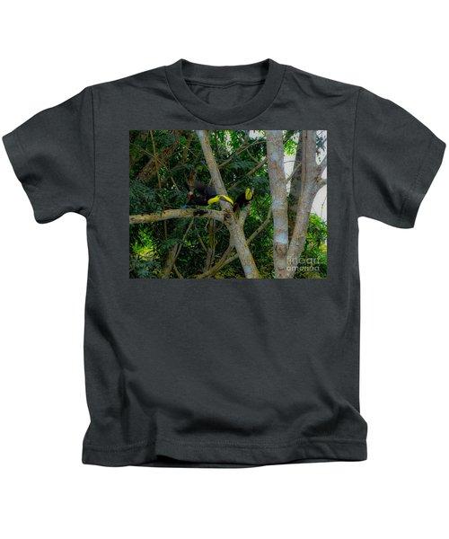 Chestnut-mandibled Toucans Kids T-Shirt