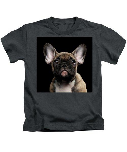 Closeup Portrait French Bulldog Puppy, Cute Looking In Camera Kids T-Shirt
