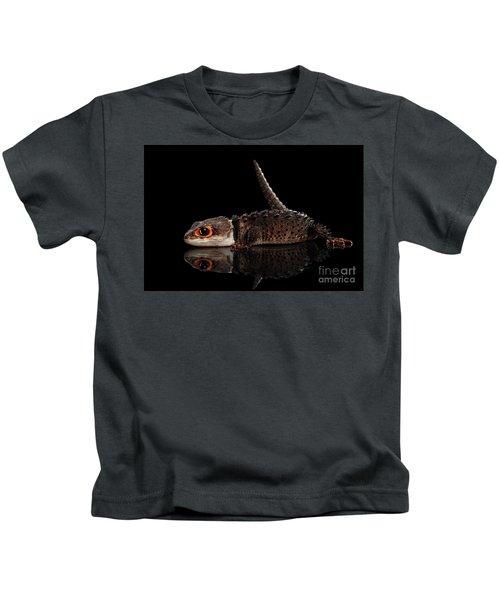 Closeup Red-eyed Crocodile Skink, Tribolonotus Gracilis, Isolated On Black Background Kids T-Shirt