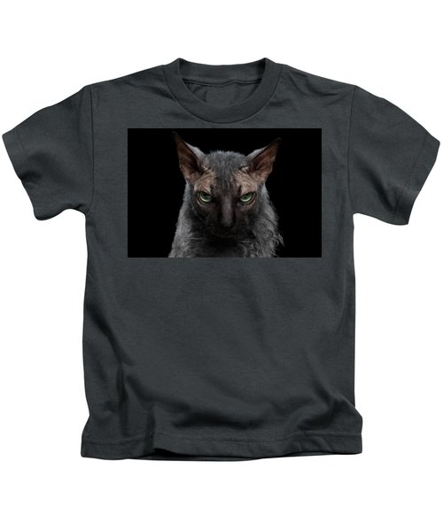 Closeup Werewolf Sphynx Cat Angry Looking In Camera Isolated Black Kids T-Shirt